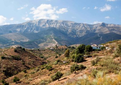 Finca Mariposa - Course center & holiday apartments in southern Spain
